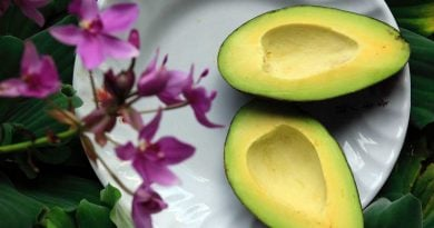 health benefits avocado