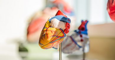 Cardiovascular health: how to keep your heart and blood vessels healthy